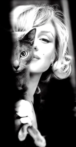 marilyn and cat